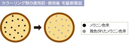product19.jpg